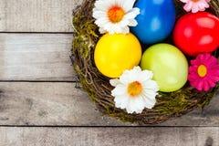 Het nest van Pasen stock afbeeldingen