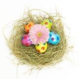 Het nest van Pasen met een roze bloem Royalty-vrije Stock Afbeeldingen
