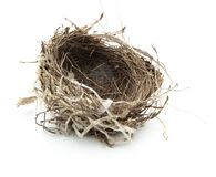Het nest van vogels dat op wit wordt geïsoleerda. royalty-vrije stock afbeeldingen