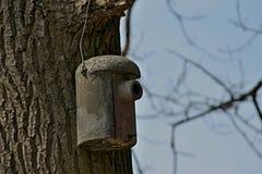 Het nestelen doos op een boom Stock Foto