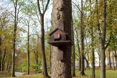 Het nestelen doos, vogelhuis voor vogels in het park Stock Foto