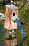 Het nest houten doos van de eend op de vijver Stock Afbeeldingen