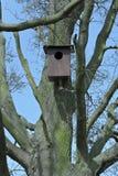Het nestkastje van het vogelhuis Royalty-vrije Stock Afbeeldingen
