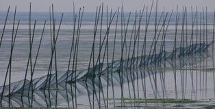 Het net van de visserij in meer stock foto's