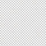 Het netwerk van de kip Stock Foto