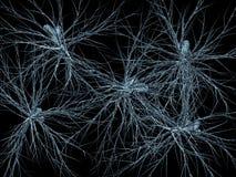 Het netwerk van neuronen Stock Afbeelding