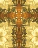 Het nevelige kruis van ochtendbomen Stock Foto's