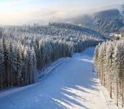 Het nevelige landschap van de de winterberg stock afbeeldingen