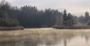 Het nevelige Meer van de Ochtend van de Winter stock afbeeldingen