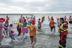 Het nieuwe jaren traditionele zwemmen op fisrtjanuari Royalty-vrije Stock Afbeeldingen