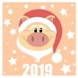 Het Nieuwjaar 2019 van het Cristmasvarken stock foto's