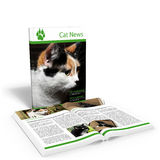 Het Nieuws van de kat Stock Afbeelding