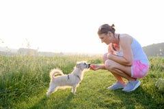 Het nieuwsgierige hond onderzoeken door een vrouw op een grintweg bij zonsondergang Royalty-vrije Stock Foto's