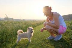 Het nieuwsgierige hond onderzoeken door een vrouw op een grintweg bij zonsondergang Stock Foto