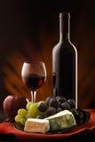 Het nog-leven met kaas, druif en wijn Royalty-vrije Stock Afbeeldingen