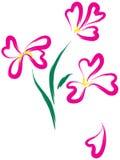 Het nog-leven met roze bloemen als hart-vorm Stock Afbeelding
