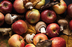 Het nog-leven van de herfst stock foto's