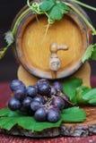 Het nog-leven van de wijn Royalty-vrije Stock Foto's