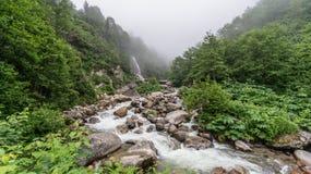 Het noordelijke van de de rivierenaard van Turkije Rize Leven van het Land Stock Afbeeldingen