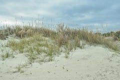 Het noorden Carolina Coast Sand Dune stock afbeeldingen