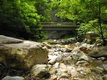 Het noorden Carolina Creek Stock Foto's