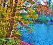 Het noorden Carolina Fall Foliage Stock Afbeeldingen