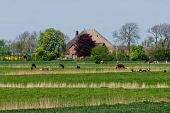 Het noorden Duits landschap Stock Afbeeldingen