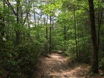 Het noorden Georgia Mountains Stock Afbeelding