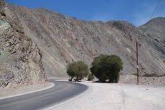 Het noorden van Argentinië/noa, jujuy salta, royalty-vrije stock foto