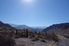 Het noorden van Argentinië/noa, jujuy salta, stock foto's