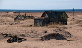 Het noorden van Russia.Desert003 Stock Afbeelding