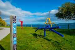 HET NOORDENeiland, NIEUW ZEELAND 18 MEI, 2017: Mooie abstracte kunst en mooie mening van mooi Meer Taupo met bergen Royalty-vrije Stock Foto's