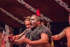 HET NOORDENeiland, NIEUW ZEELAND 17 MEI, 2017: Sluit van een Tamaki Maori-leidersmens die dansen met traditioneel tatooed omhoog  Stock Foto