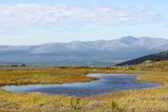 Het noordenlandschap stock fotografie