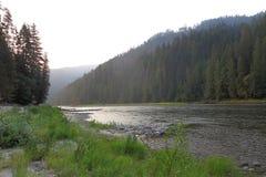 Het noordenvork van de Selway-Rivier Stock Afbeelding