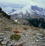 Het noordoostelijke gezicht van Onderstel Regenachtiger van de top van MT Fremont, MT Rainier National Park, Washington stock foto's
