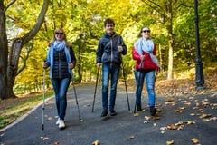 Het noordse lopen - het actieve mensen uitwerken Stock Afbeelding