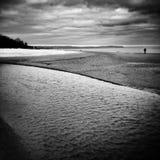 Het noordse lopen Artistiek kijk in zwart-wit Stock Foto