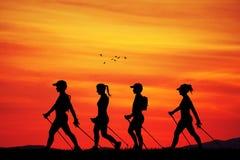 Het noordse lopen bij zonsondergang Stock Fotografie