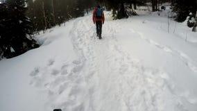 Het noordse Lopen in diep de winterbos met camera op mijn hoofd stock footage