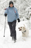 Het noordse lopen met hond Royalty-vrije Stock Afbeeldingen