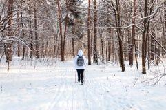 Het noordse lopen Vrouw in een wit jasje met een rugzak die in een koud bos Toneel mooi landschap met sneeuw wandelen royalty-vrije stock afbeelding