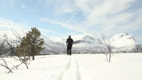 Het noordse skiån stock video