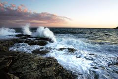 Het oceaan leven Royalty-vrije Stock Afbeeldingen