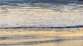 Het oceaangolf Breken op het Strand in Langzame Motie stock video