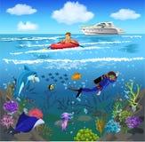 Het oceaanleven en onderwaterwereld Royalty-vrije Stock Foto's