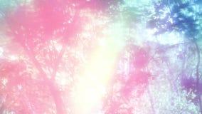 Het ochtendlicht, de bomen schudt de luifel van de versheid van roze hoop stock video
