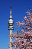 Het Olympische Park van München Stock Afbeeldingen