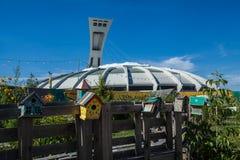 Het Olympische Stadion van Montreal zoals die van achter een houten bank wordt gezien stock fotografie