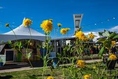Het Olympische Stadion van Montreal zoals die van achter een rij van gele bloemen wordt gezien royalty-vrije stock foto